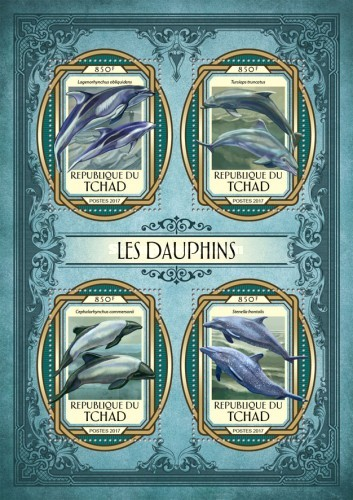[Marine Life - Dolphins, Typ ]