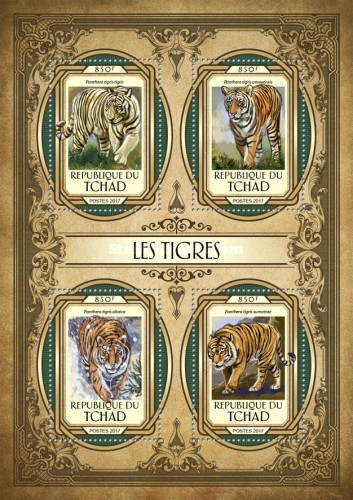 [Fauna - Tigers, type ]