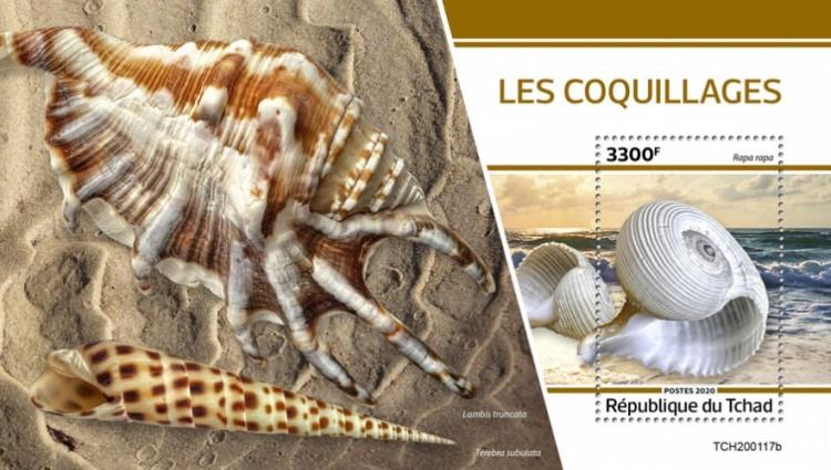 [Marine Life - Shells, type ]
