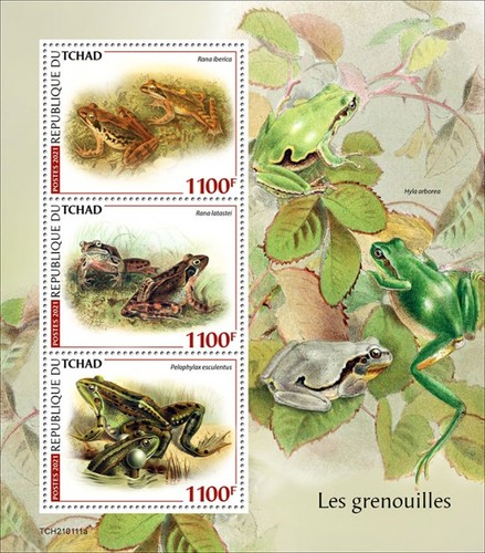 [Fauna - Frogs, type ]
