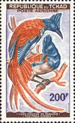 [Airmail - Birds, type AE]