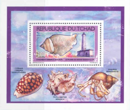 [Shells & Lighthouses, type BZP1]