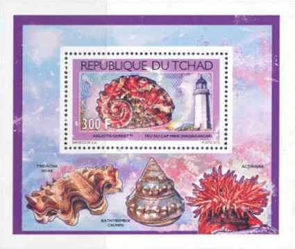 [Shells & Lighthouses, type BZQ1]