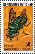 [Insects, type PS]