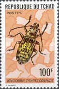 [Insects, type PT]