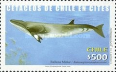 [Whales, type BQR]