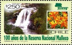 [The 100th Anniversary of Malleco National Reserve, type BVR]