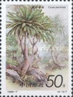 [Cycads, type CXH]
