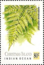 [Ferns, type JH]