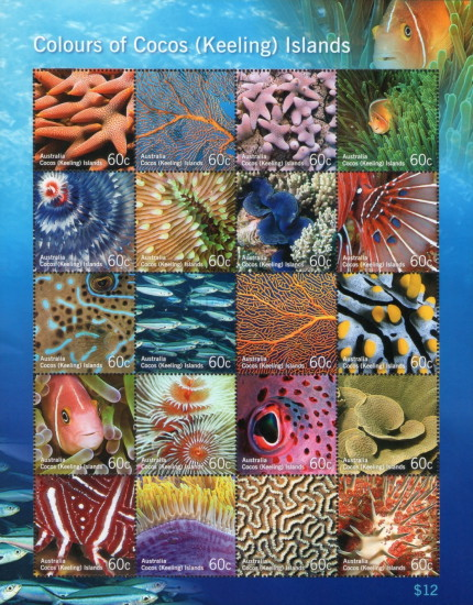 [Marine Life - Colors of Cocos Islands, type ]