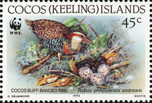 [Birds - Endangered Species - Buff-banded Rail, type JJ]