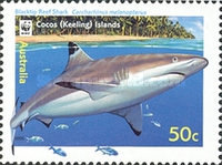 [Cocos Island Reef Sharks, type PD]