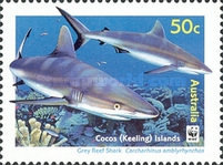 [Cocos Island Reef Sharks, type PE]