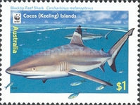 [Cocos Island Reef Sharks, type PF]