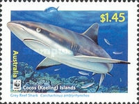 [Cocos Island Reef Sharks, type PG]