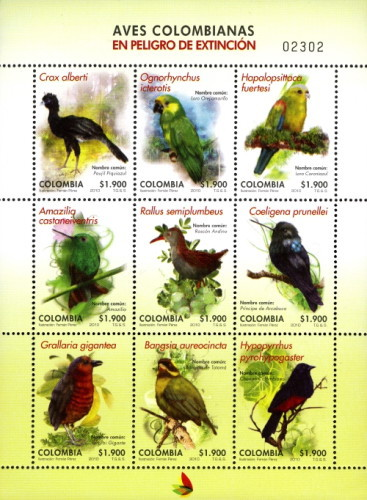 [Endangered Colombian Birds, Typ ]