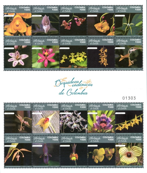 [Flowers - Orchids of Colombia, Typ ]