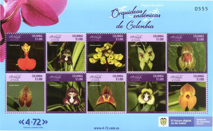 [Flowers - Endemic Orchids of Colombia, type ]