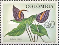 [Colombian Fauna and Flora, Typ ANB]