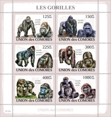 [Gorillas, type ]