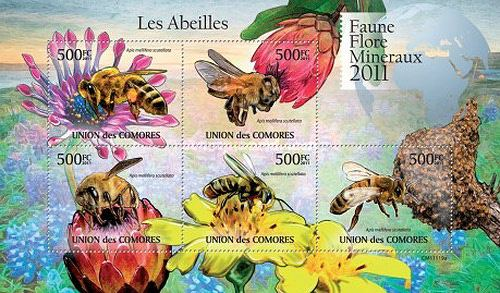 [Insects - African Honey Bee, Typ ]