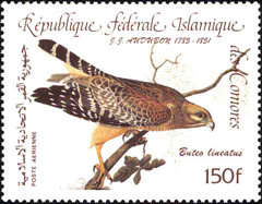 [Airmail - Birds - The 200th Anniversary of the Birth of John J. Audubon, type AAG]