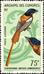 [Airmail - Birds, type BL]