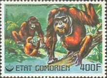 [Airmail - Endangered Animals, type KY]