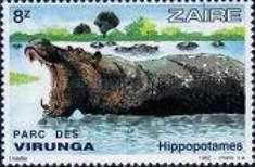 [Virunga National Park, Typ ABH]
