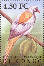 [Birds of the Congo, Typ BCA]