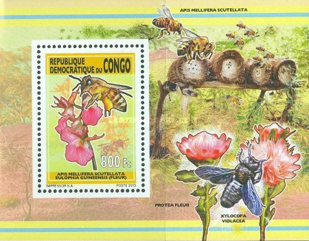 [Bees and Flowers, type CDW1]