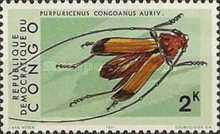 [Insects, Typ NI]