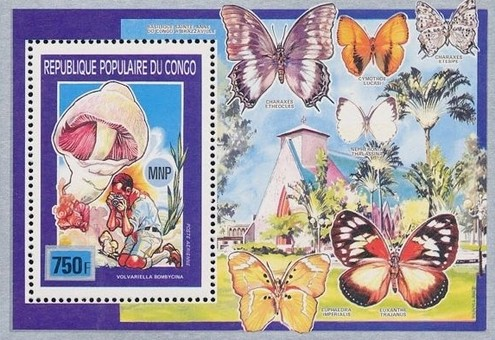 [Airmail - Scouts, Butterflies and Fungi, Typ ]