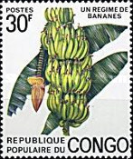 [Congolese Fruits, Typ PK]