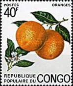 [Congolese Fruits, Typ PO]