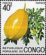 [Congolese Fruits, Typ PP]