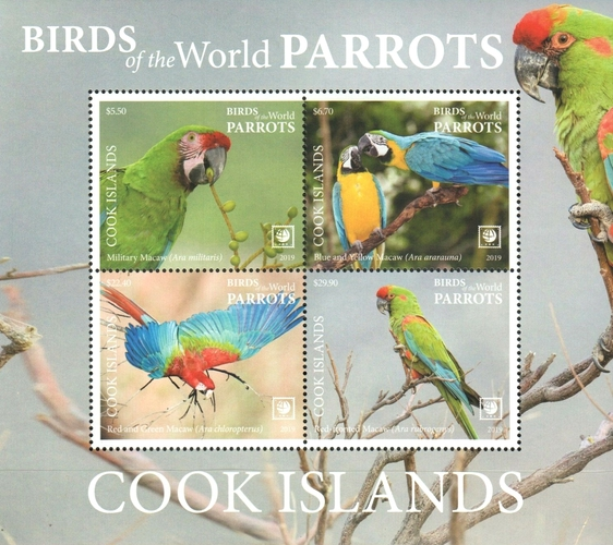 [Birds of the World - Parrots - White Frame on 2 Sides, type ]