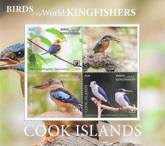 [Birds of the World - Kingfishers, type ]
