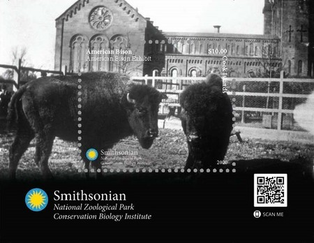 [Fauna - American Bison, type ]