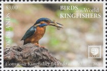 [Birds of the World - Kingfishers, type BCK]