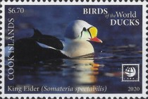 [Birds of the World - Ducks, type BCO]