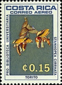 [Airmail - University Library - Orchids, type OK]