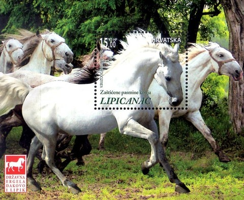 [Protected Horse Breeds - Lipizzan Horse, type ]