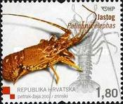 [Croatian Fauna - Lobster, type AAH]