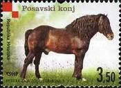 [Croatian Autochthonous Breeds, type AAL]