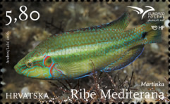 [EUROMED Issue - Fishes of the Mediterranean Sea, type AQT]