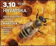 [Croatian Fauna - Honey Bee, type AVM]