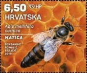 [Croatian Fauna - Honey Bee, type AVO]