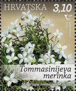 [Croatian Flora - Protected Species, type AYS]
