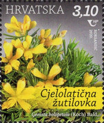 [Croatian Flora - Protected Species, Typ AYT]